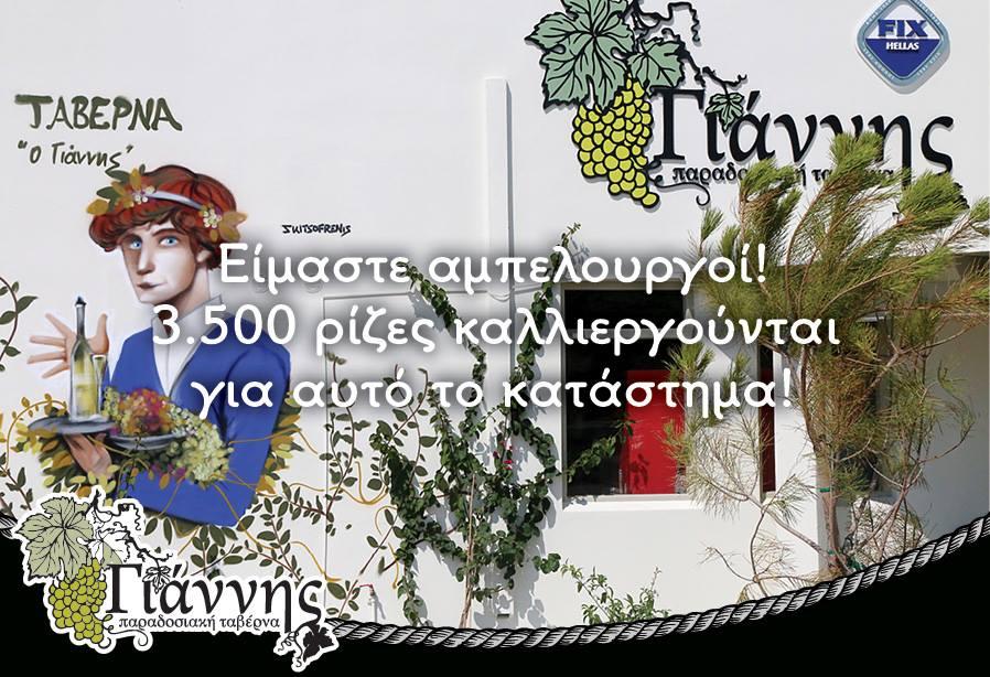 Ταβέρνα Γιάννης - Είμαστε αμπελουργοί! 3500 ρίζες καλλιεργούνται για την ταβέρνα μας!